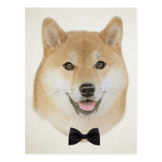 Bow and tie funny shiba inu dog illustration postcard