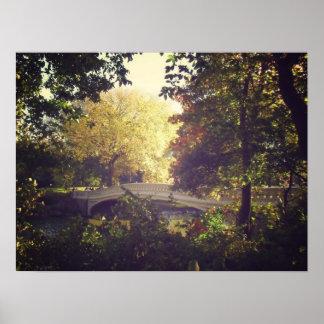 Bow Bridge Framed By Trees,Central Park, Medium Print