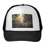 Bow Bridge Framed By Trees,Central Park, NYC Trucker Hats
