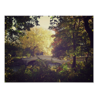 Bow Bridge Framed By Trees,Central Park, Small Posters