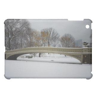 Bow Bridge, Winter Landscape, New York City iPad Mini Cases