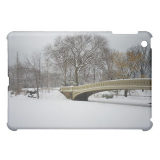 Bow Bridge, Winter Trees, Central Park, NYC Case For The iPad Mini