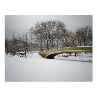 Bow Bridge, Winter Trees, Central Park, NYC Postcard