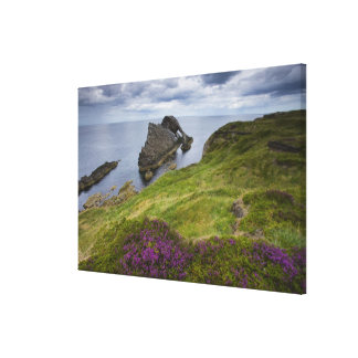 Bow Fiddle Rock, Portknockie, Scotland Canvas Print