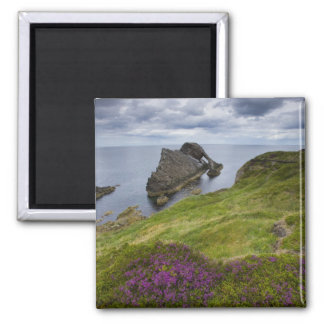 Bow Fiddle Rock, Portknockie, Scotland Magnet