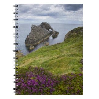 Bow Fiddle Rock, Portknockie, Scotland Notebook