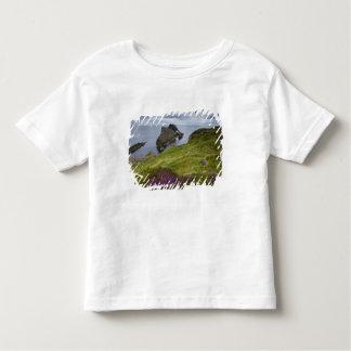 Bow Fiddle Rock, Portknockie, Scotland Toddler T-shirt