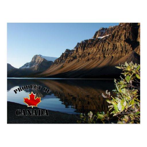 Bow Lake & Glacier Postcard