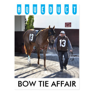Bow Tie Affair Postcard