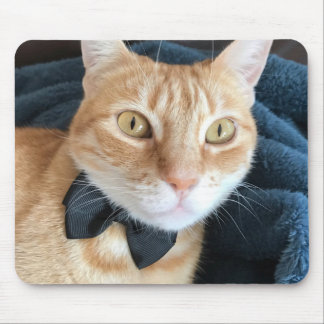Bow tie cat mouse pad