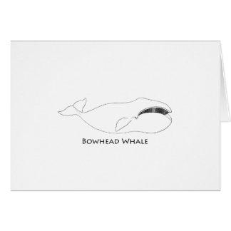 Bowhead Whale (line art illustration) Card