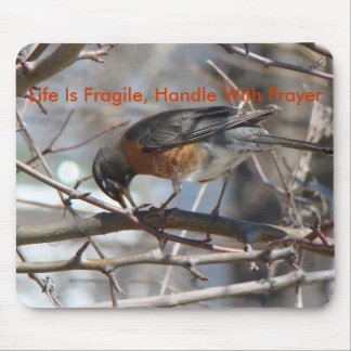 Bowing Robin, Life Is Fragile, Handle With Prayer Mouse Pad