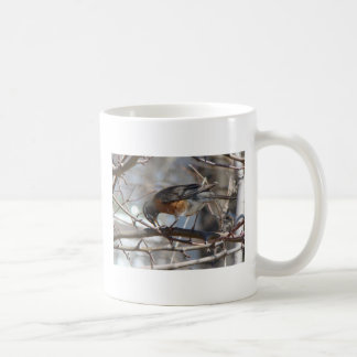 Bowing Robin, Life Is Fragile Handle With Prayer Classic White Coffee Mug