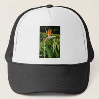 Bowing Strelitzia Trucker Hat