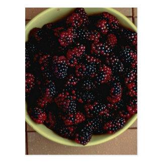 Bowl full of Blackberries Postcard