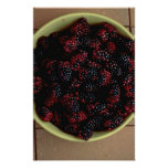 Bowl full of Blackberries Posters