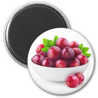 Bowl of cranberries magnet