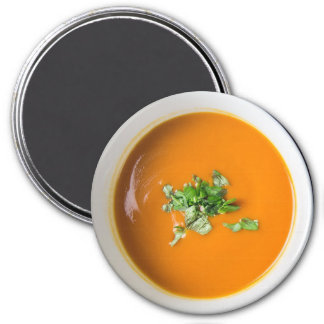 Bowl of Tomato Soup Food Refrigerator Magnet