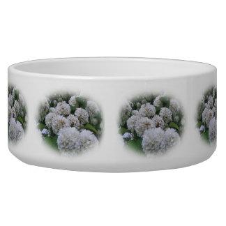 Bowl - White Hydrangeas