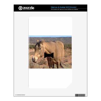 Bowtie Horse NOOK Color Skin