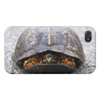 Box Turtle Cases For iPhone 4
