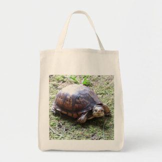 Box Turtle - Mossy Path Bags