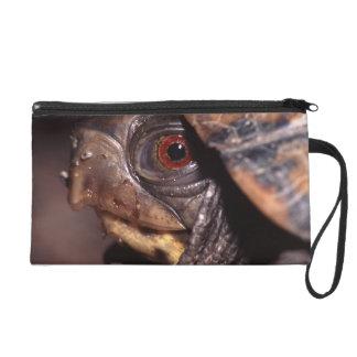 box turtle portrait wristlet clutch