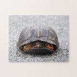 Box Turtle Puzzle