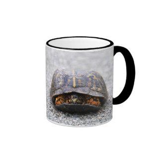 Box Turtle Ringer Mug