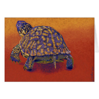 Box Turtle, tortoise Stationery Note Card