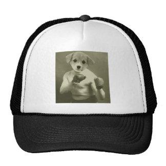 Boxeador del perro de perrito gorro