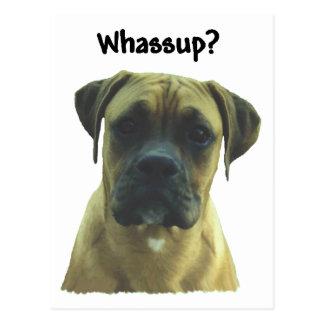 Boxeador:  ¿Whassup? Postal
