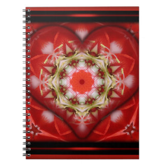 Boxed Heart Spiral Notebooks