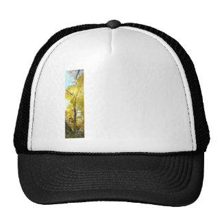 Boxelder Ashleaf Maple 1 Horizontal Left .png Trucker Hat