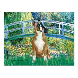 Boxer 1cr - Bridge Postcard