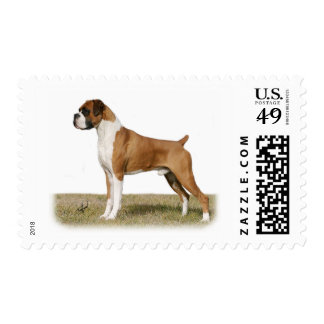 Boxer 9Y349D-036 Stamps