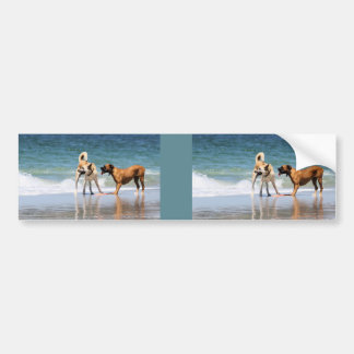 Boxer and Pal - Was that a Dolphin? Car Bumper Sticker