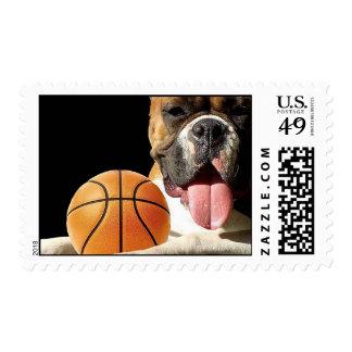 Boxer basketball postage