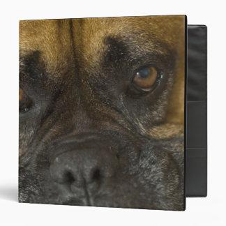 Boxer Vinyl Binders