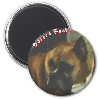 Boxer:  Boxers Rock Magnet