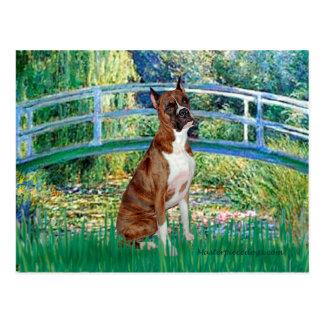 Boxer (br5) - Bridge Postcard