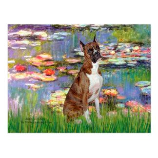 Boxer (br5) - Lilies 2 Postcard