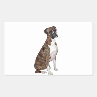 Boxer - brindle (natural ears) rectangular sticker