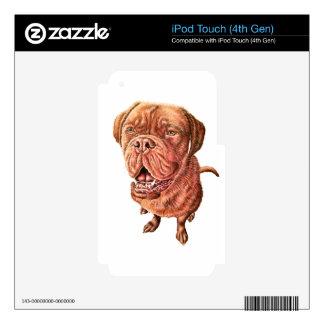 Boxer Bulldog Mastiff Dog Drawing Animal Art iPod Touch 4G Decals