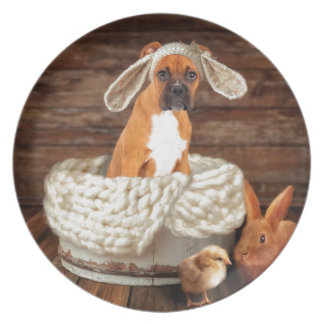 Boxer Bunny Plate