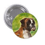 Boxer - button with dog breed boxer