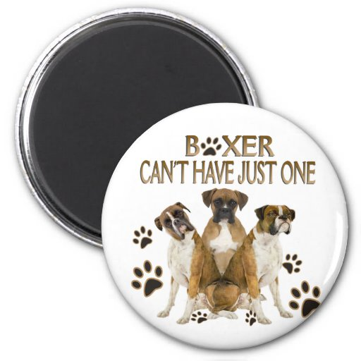 Boxer Can't Have Just One Gifts 2 Inch Round Magnet