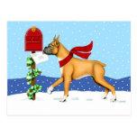 Boxer Christmas Mail Postcards