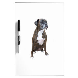 Boxer - Dark Brindle Dry-Erase Boards