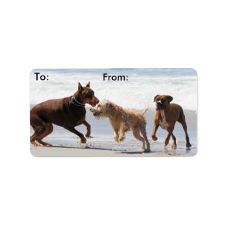 Boxer Doberman - Play Date at the Beach Address Label